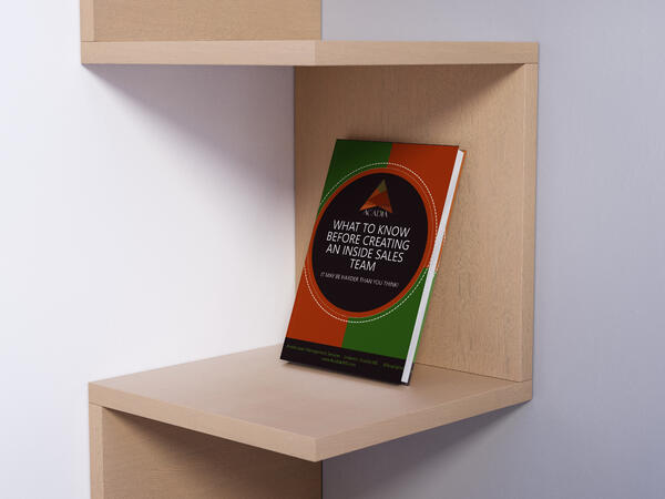 insidesalesebook